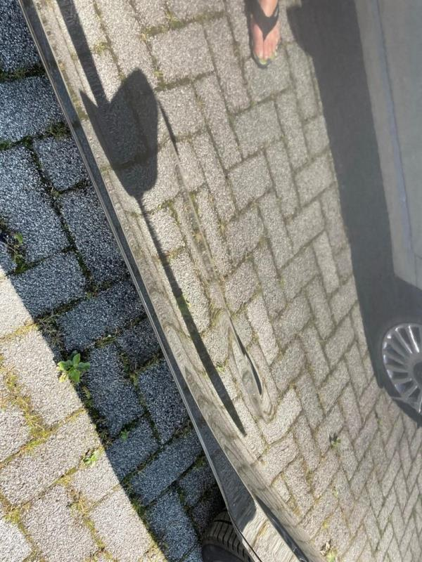 https://cdn.aeman.nl/AE_Hammertime/image/800/800/78435dad-b553-4ee9-bf77-8ec5079cc834/jpg