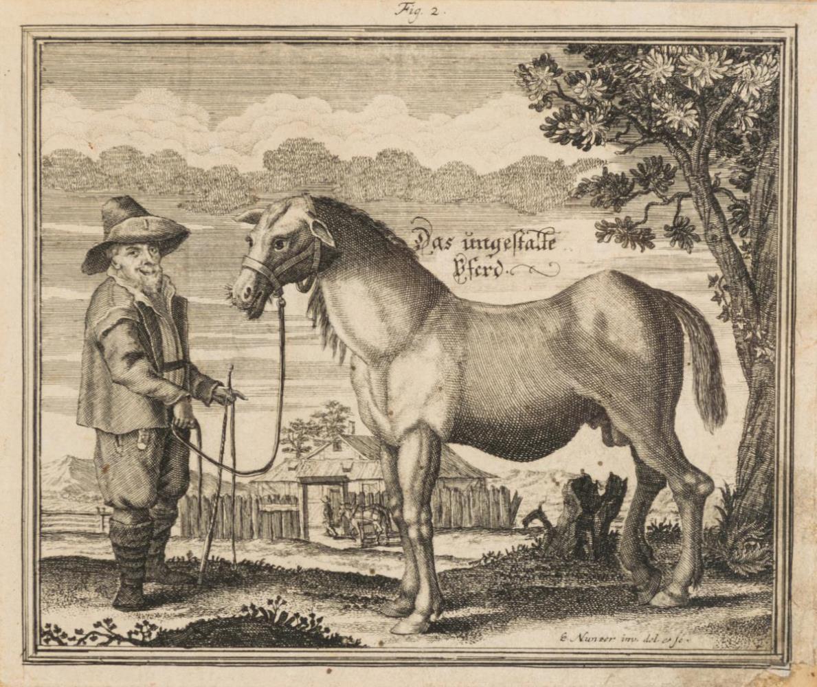 1818_1.jpg